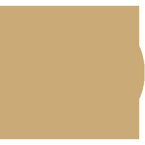 stroom icon